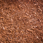 harvest-gold-mulch